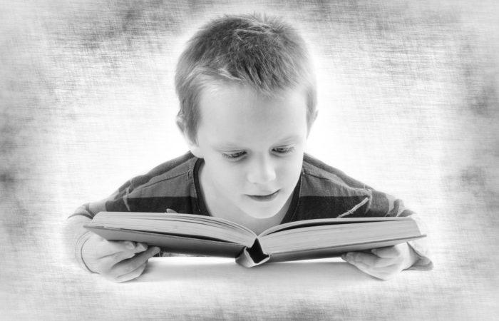 Lesender Junge Pixabay 316508